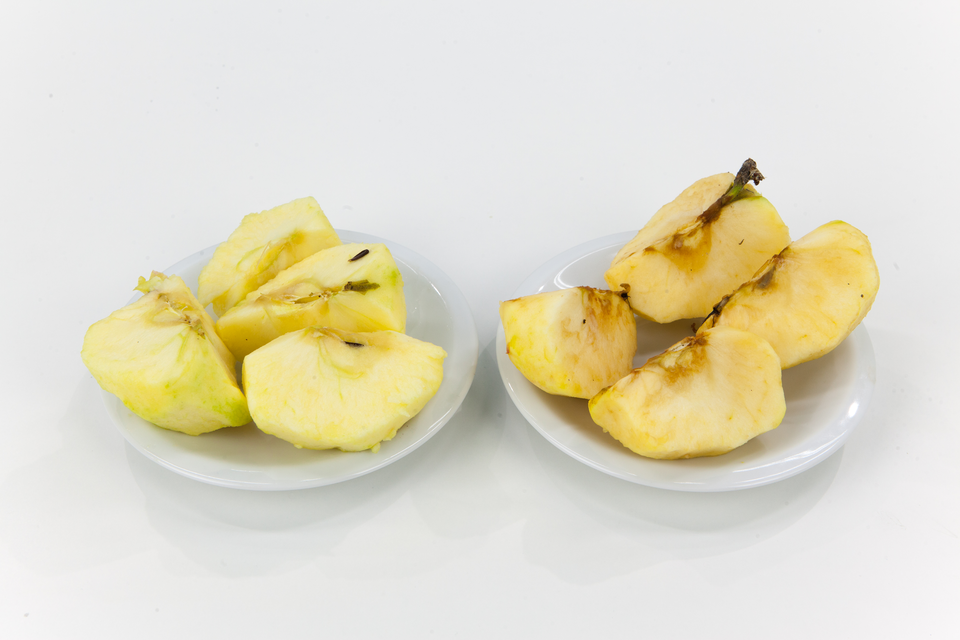 Fotografie przedstawiające: 1. Pokrojone, obrane jabłka-świeże izbrązowiałe. 2. Chleb świeży ispleśniały. 3. Masło świeże izjełczałe. 4. Mleko świeże ikwaśne – mocno skwaśniałe, zrozwijającymi się grzybami wszklankach, obok kartonik na mleko UHT.