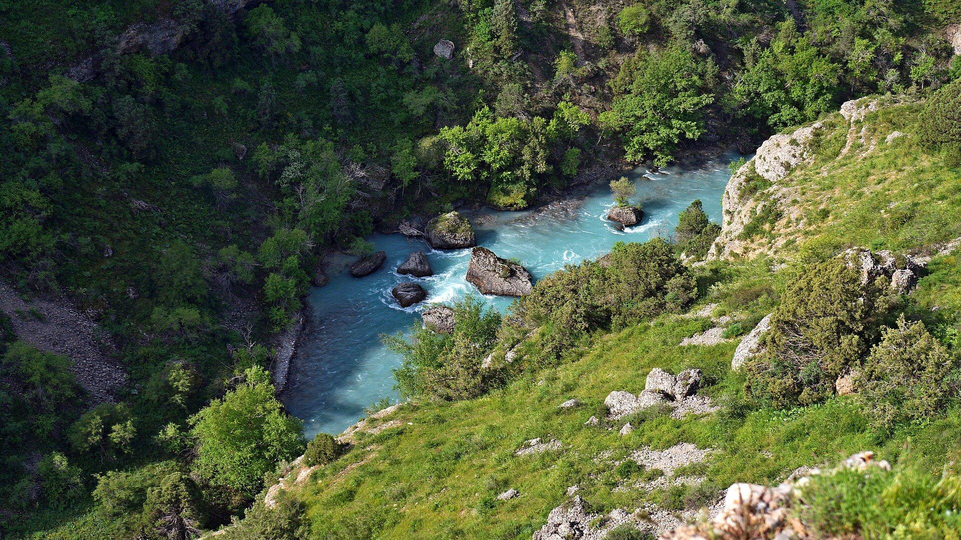 Zdjęcie przedstawia górską rzekę lub strumień. Zdjęcie zrobiono zwysokiego brzegu, który porośnięty jest trawą ikrzakami. Brzegi rzeki porośnięte są wysokimi krzewami idrzewami.