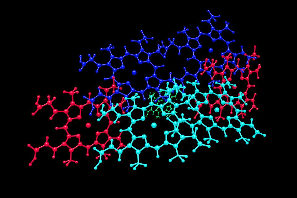 Ilustracja, stworzona przez program komputerowy, przedstawia model cząsteczki hemu, czerwonego barwnika krwi.