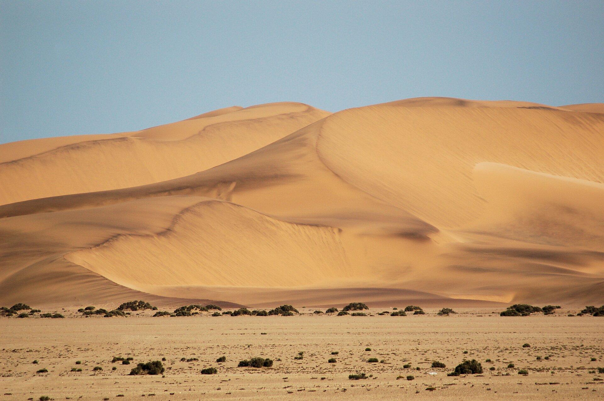 Zdjęcie wydm. Na pierwszym planie teren płaski. Na drugim planie olbrzymie wydmy – barchany.