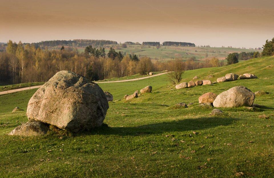 Na zdjęciu kilkanaście głazów narzutowych rozrzuconych po trawiastym terenie.