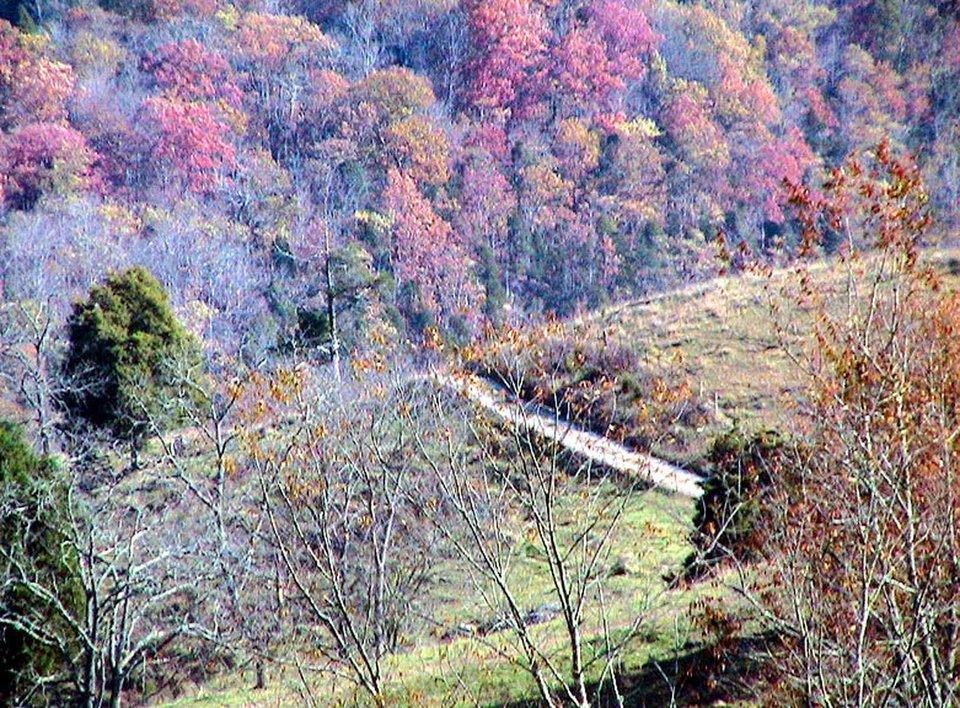 Pejzaż zwiejską drogą Źródło: C. E. Price, Pejzaż zwiejską drogą, domena publiczna.