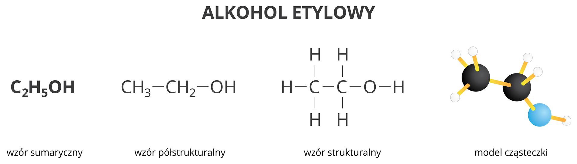 Model iwzory alkoholu etylowego