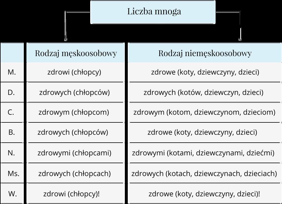 tabela przymiotnik Źródło: Contentplus.pl sp. zo.o..