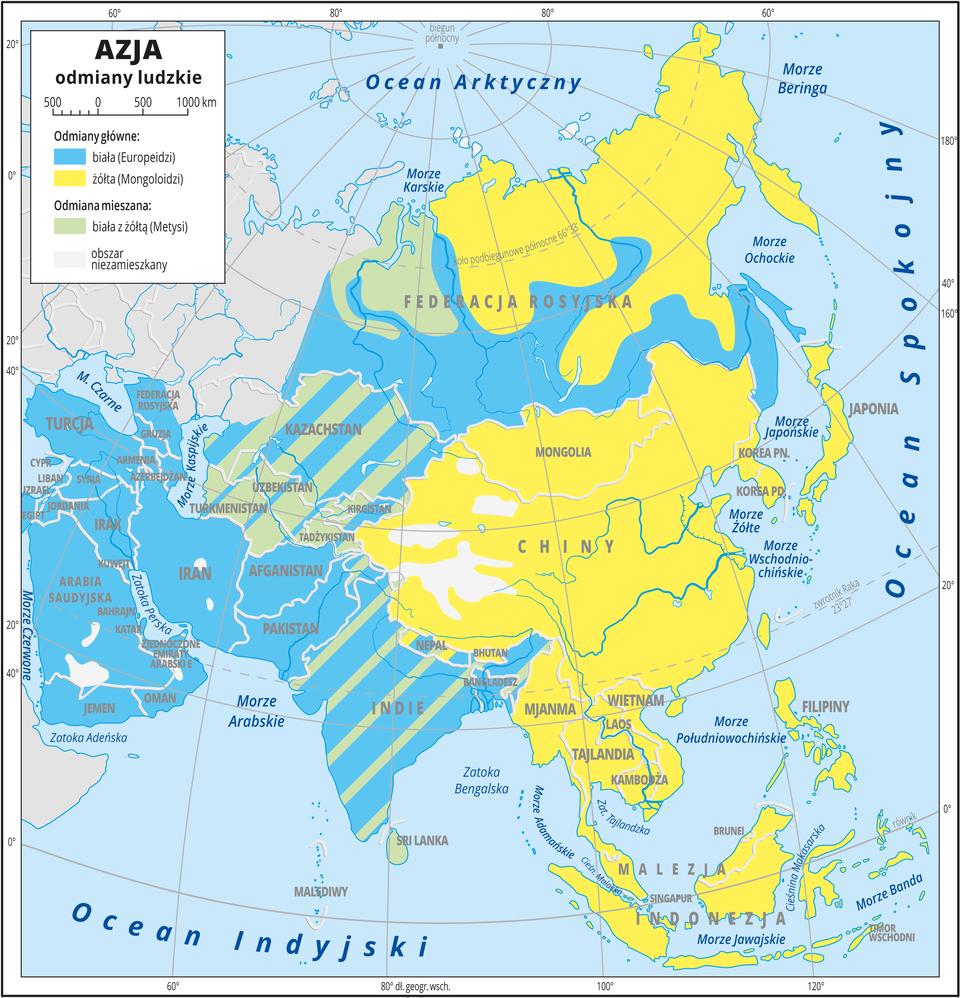 Ilustracja przedstawia mapę odmian ludzkich wAzji. Odmiany główne: biała – Europeidzi, żółta – Mongoloidzi. Odmiany mieszane: biała zżółtą – Metysi. Najwięcej obszarów pokrywa kolor niebieski oznaczający odmianę białą (na południu iwśrodkowej części Azji), iżółty – Mongoloidzi (na północnym-wschodzie ipołudniowym- wschodzie Azji). Państwa nad Morzem Kaspijskim zamieszkuje odmiana mieszana – Metysi. Część obszarów pokrywają kolorowe pasy oznaczające, że występuje tam ludność różnych odmian (głównie Indie iKazachstan). Dookoła mapy wbiałej ramce opisano współrzędne geograficzne co dwadzieścia stopni. Wlegendzie umieszczono iopisano kolory użyte na mapie.