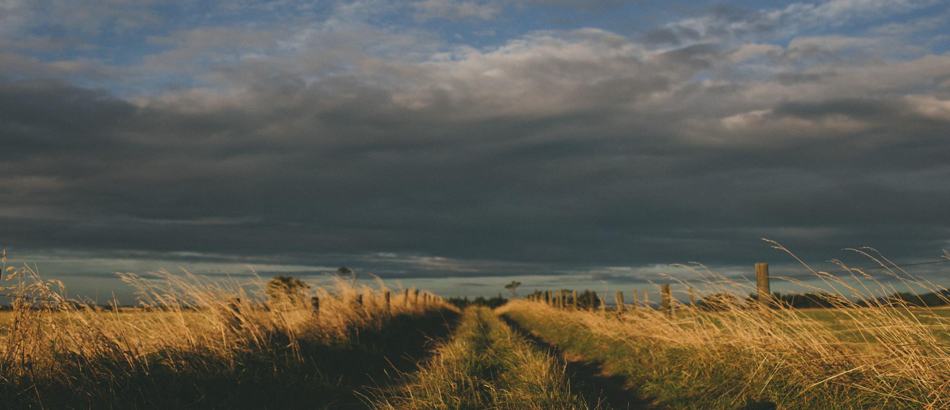 droga zdjęcie Źródło: licencja: CC 0.