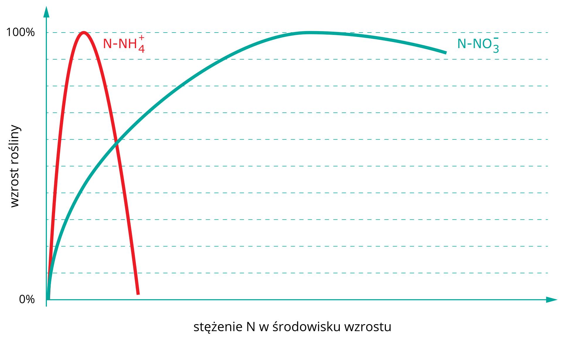Reakcja roślin na wzrastające stężenie jonów amonowych ijonów azotanowych (V) dostarczanych wnawozach [Bibl_16_06]