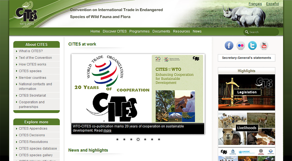 IIlustracja przedstawia zrzut ekranu strony głównej CITES wjęzyku angielskim. Ugóry zlewej logo, zprawej fotografia dwóch nosorożców. Wcentrum logo World Trade Organisation (Światowej organizacji Handlu) oraz informacja o20 latach współpracy zCITES.