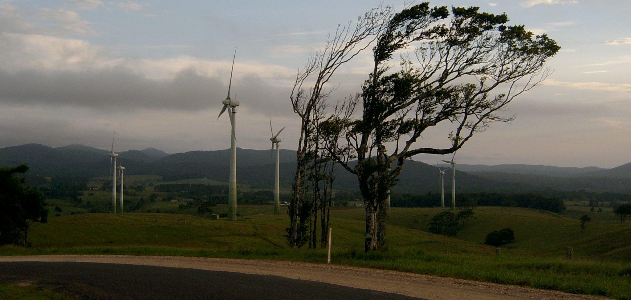 Wietrzny dzień Wietrzny dzień Źródło: Leonard Low, licencja: CC BY-SA 2.0.