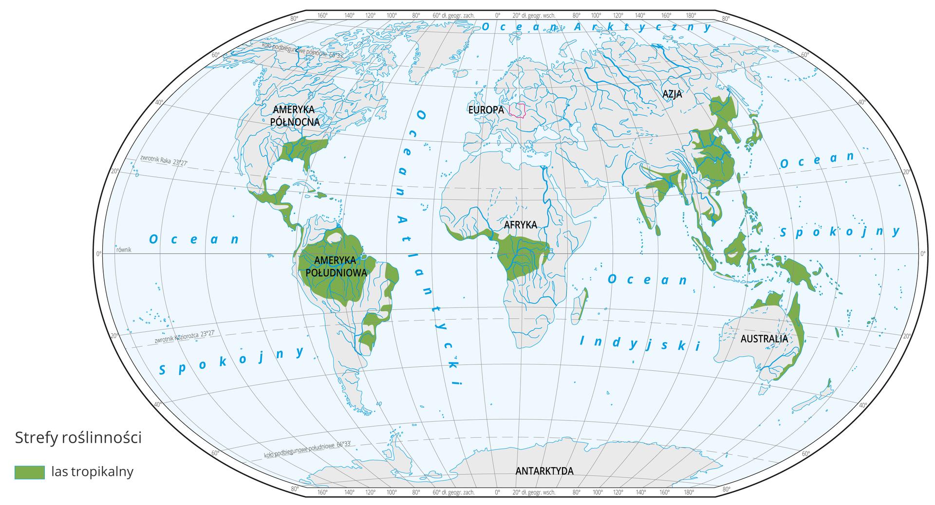 Mapa świata prezentuje występowanie lasów równikowych na Ziemi. Lasy równikowe oznaczono kolorem zielonym. Lasy równikowe występują na wysokości równika: Ameryka Południowa, środkowa Afryka, wyspy Archipelagu Malajskiego. Ponadto wAmeryce Środkowej, Azji południowo wschodniej oraz we wschodniej Australii.