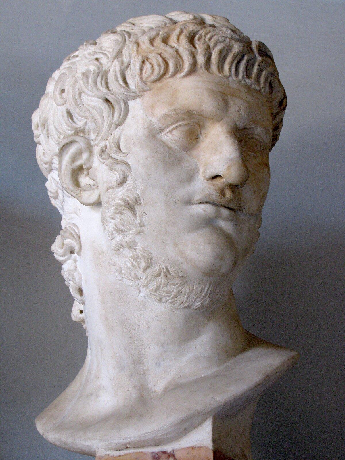 Ilustracja przedstawia głowę Nerona wykutą wmarmurze. Cesarz przedstawiony jest jako młody człowiek. Głowę ma okrągłą, raczej drobną; szyja jest nieproporcjonalnie szeroka isilna. Włosy ułożone są misternie wokół twarzy. Ma drobne usta, kształtny nos, nieduże oczy, wystający podbródek ilekko odstające uszy.