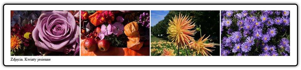 Fotografie przedstawiające kwiaty polskie
