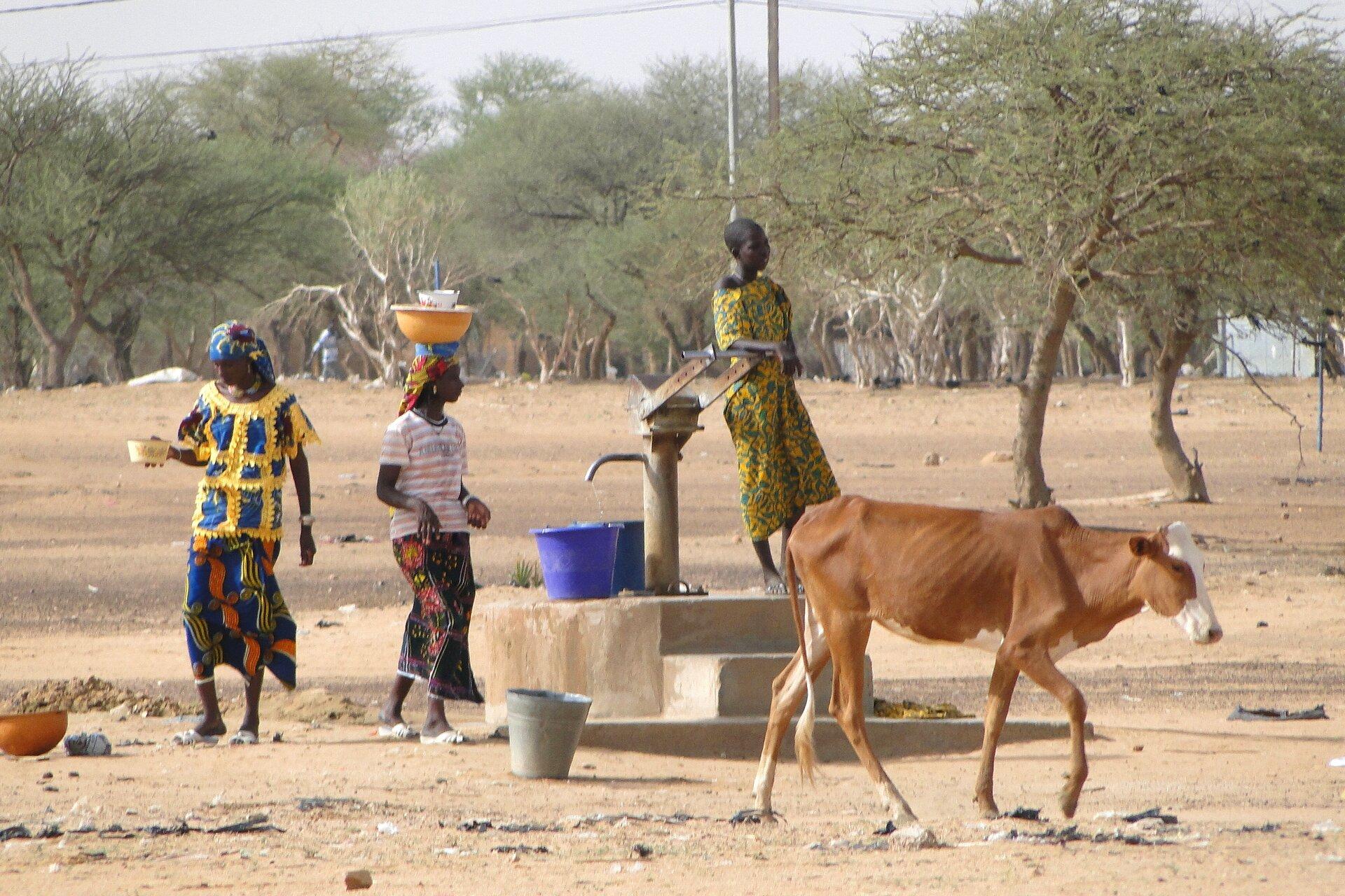Afryka – formy gospodarowania w strefie Sahelu - Epodreczniki.pl
