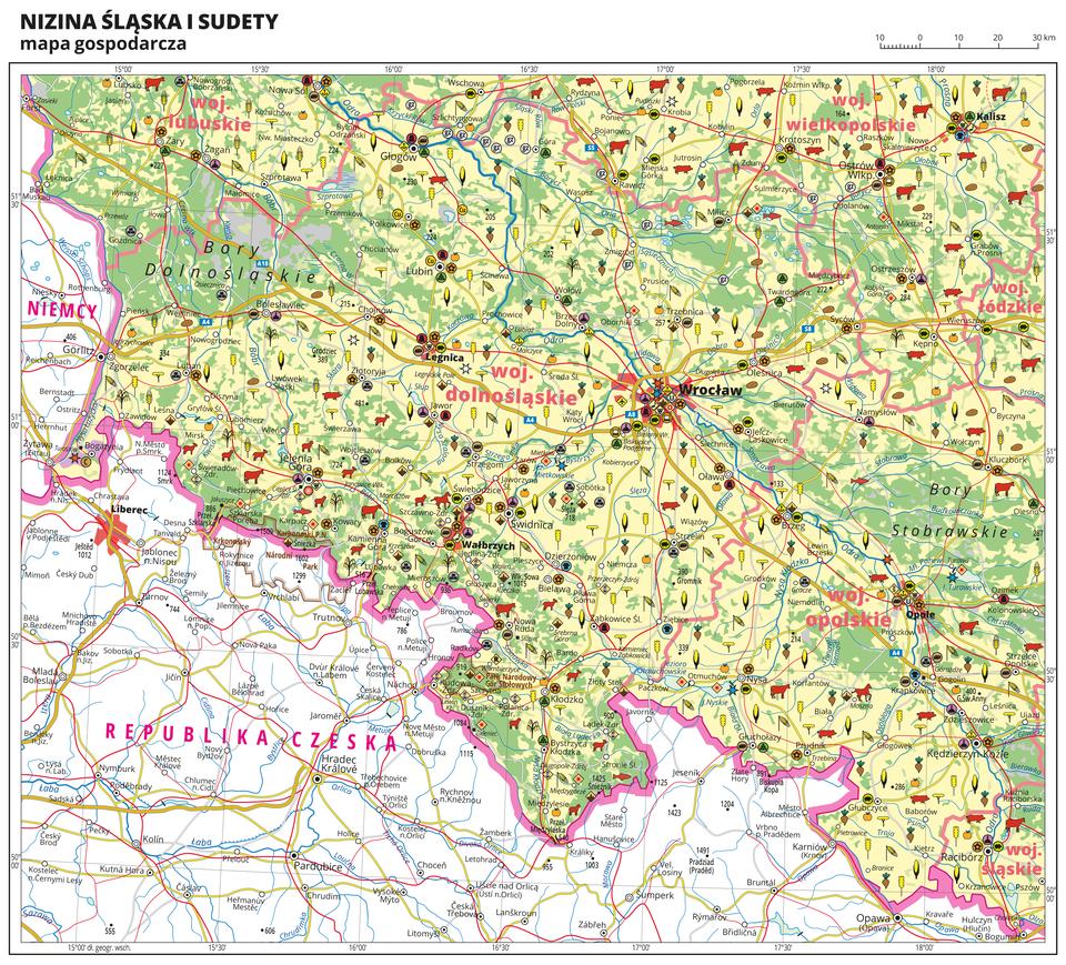 Ilustracja przedstawia mapę gospodarczą Niziny Śląskiej iSudetów. Tło mapy wkolorze żółtym (grunty orne), jasnozielonym (łąki ipastwiska) izielonym (lasy). Mapa obejmuje tereny Polski na południowym-zachodzie od granicy zNiemcami iCzechami po województwo łódzkie iśląskie na wschodzie, na północy sięgając Kalisza. Wcentralnej części mapy Wrocław. Na mapie sygnatury obrazujące uprawy poszczególnych roślin, hodowlę zwierząt, przemysł, górnictwo ienergetykę, komunikację, turystykę, naukę, kulturę isztukę. Największe zagęszczenie sygnatur we Wrocławiu. Duże zagęszczenie sygnatur wWałbrzychu, Legnicy, Jeleniej Górze, Opolu, Ostrowie Wielkopolskim iKaliszu. Na obszarze całej mapy rozmieszczone sygnatury hodowli iupraw. Na mapie przedstawiono sieć dróg ikolei, porty wodne ilotnicze, granice województw, granicę państwa. Opisano województwa lubuskie, dolnośląskie, opolskie, wielkopolskie, łódzkie iśląskie. Opisano Niemcy iRepublikę Czeską. Opisano kompleksy leśne, na przykład Bory Dolnośląskie iparki narodowe. Mapa zawiera południki irównoleżniki, dookoła mapy wbiałej ramce opisano współrzędne geograficzne co trzydzieści minut.