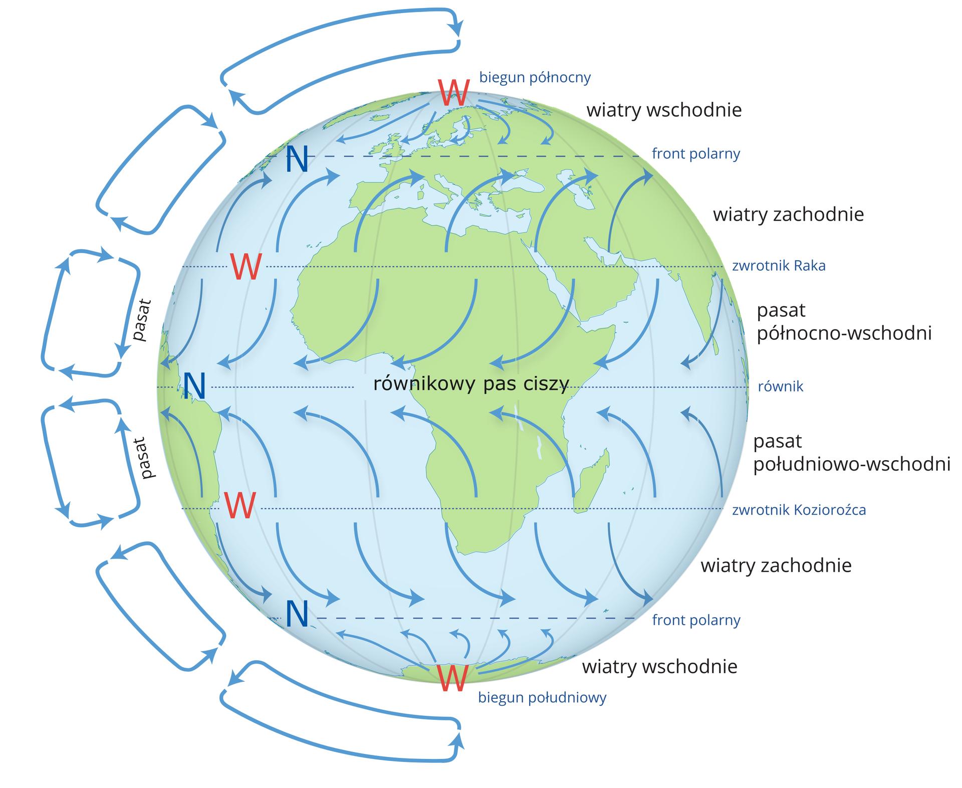 Ilustracja przedstawia kulę ziemską. Kolorem niebieskim zaznaczono wody. Kolorem zielonym zaznaczono lądy. Wcentrum Afryka. Na kuli ziemskiej zaznaczono równik, zwrotniki ilinie frontów polarnych. Na równiku opisano równikowy pas ciszy. Literami wu opisano ośrodki wyżowe nad zwrotnikami ibiegunami. Literami en opisano ośrodki niżowe nad równikiem iliniami frontów polarnych. Niebieskimi strzałkami zaznaczono kierunki wiatru. Wieją one od wyżu do niżu nieco skręcając wposzczególnych pasach. Zprawej strony kuli ziemskiej opisano kierunki wiatrów. Idąc od bieguna północnego wyróżniamy sześć pasów wydzielonych przez linie frontów polarnych, zwrotniki irównik. Wieją wnich kolejno wiatry wschodnie, wiatry zachodnie, pasat północno-wschodni, pasat południowo-wschodni, wiatry zachodnie iwiatry wschodnie. Zlewej strony kuli ziemskiej przedstawiono niebieskimi strzałkami kierunek cyrkulacji mas powietrza.