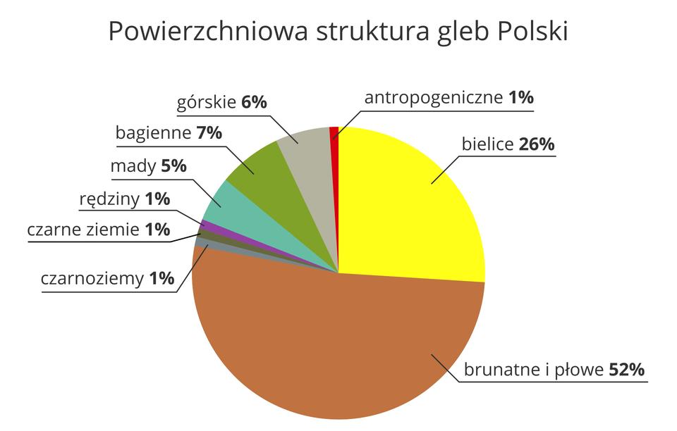 Na ilustracji diagram kołowy, powierzchniowa struktura gleb Polski. <table><tr><td>Bielice</td><td>26,00%</td></tr><tr><td>Brunatne ipłowe</td><td>52,00%</td></tr><tr><td>Czarnoziemy</td><td>1,00%</td></tr><tr><td>Czarne ziemie</td><td>1,00%</td></tr><tr><td>Rędziny</td><td>1,00%</td></tr><tr><td>Mady</td><td>5,00%</td></tr><tr><td>Bagienne</td><td>7,00%</td></tr><tr><td>Górskie</td><td>6,00%</td></tr><tr><td>Antropogeniczne</td><td>1,00%</td></tr></table>