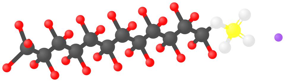Wzór strukturalny imodel laurylosiarczanu(VI) sodu