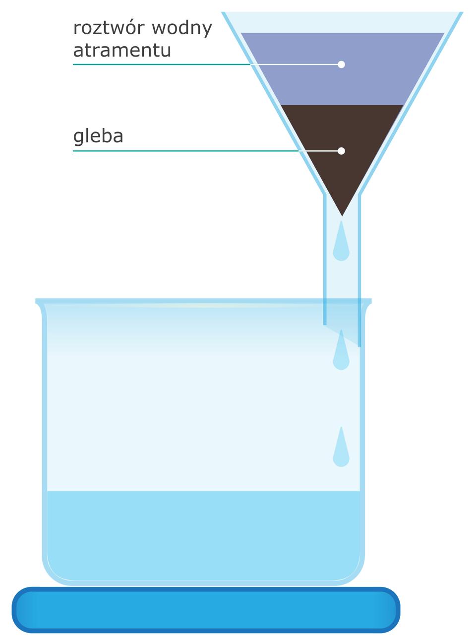 Gleba ma właściwości sorpcyjne. Dzięki temu ma zdolność do pochłaniania gazów zpowietrza, cząsteczek lub jonów zroztworów oraz mikroorganizmów idrobnych cząstek zzawiesin (właściwości sorpcyjne gleby można zaobserwować, przeprowadzając prosty eksperyment – rysunek)