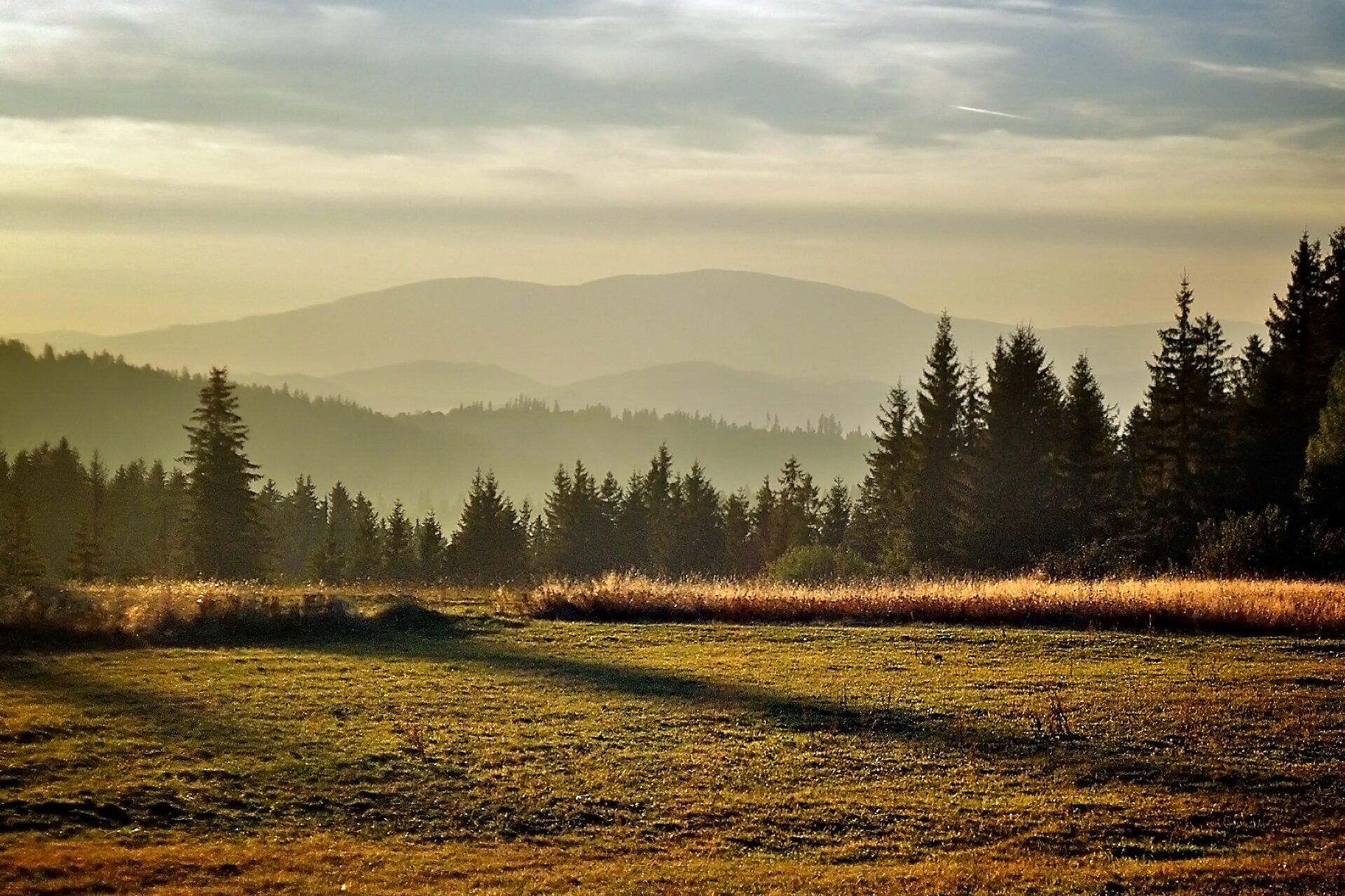 Galeria prezentuje różne typy gór spotykane wPolsce. Pierwsza fotografia to przykład gór średnich, na fotografii Babia Góra. Na pierwszym planie widoczna łąka ze świerkami na obrzeżach