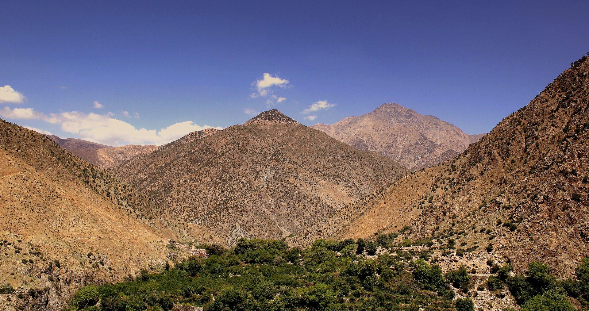Na zdjęciu kilka szczytów ożwirowych stokach porośniętych kępami traw.