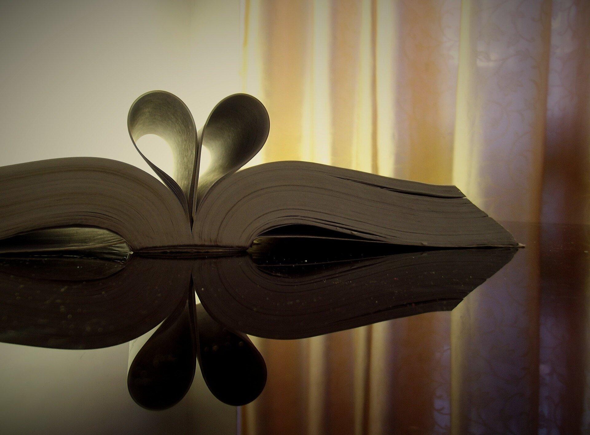 Okładka - literatura jako język miłości Źródło: pixabay, licencja: CC 0.