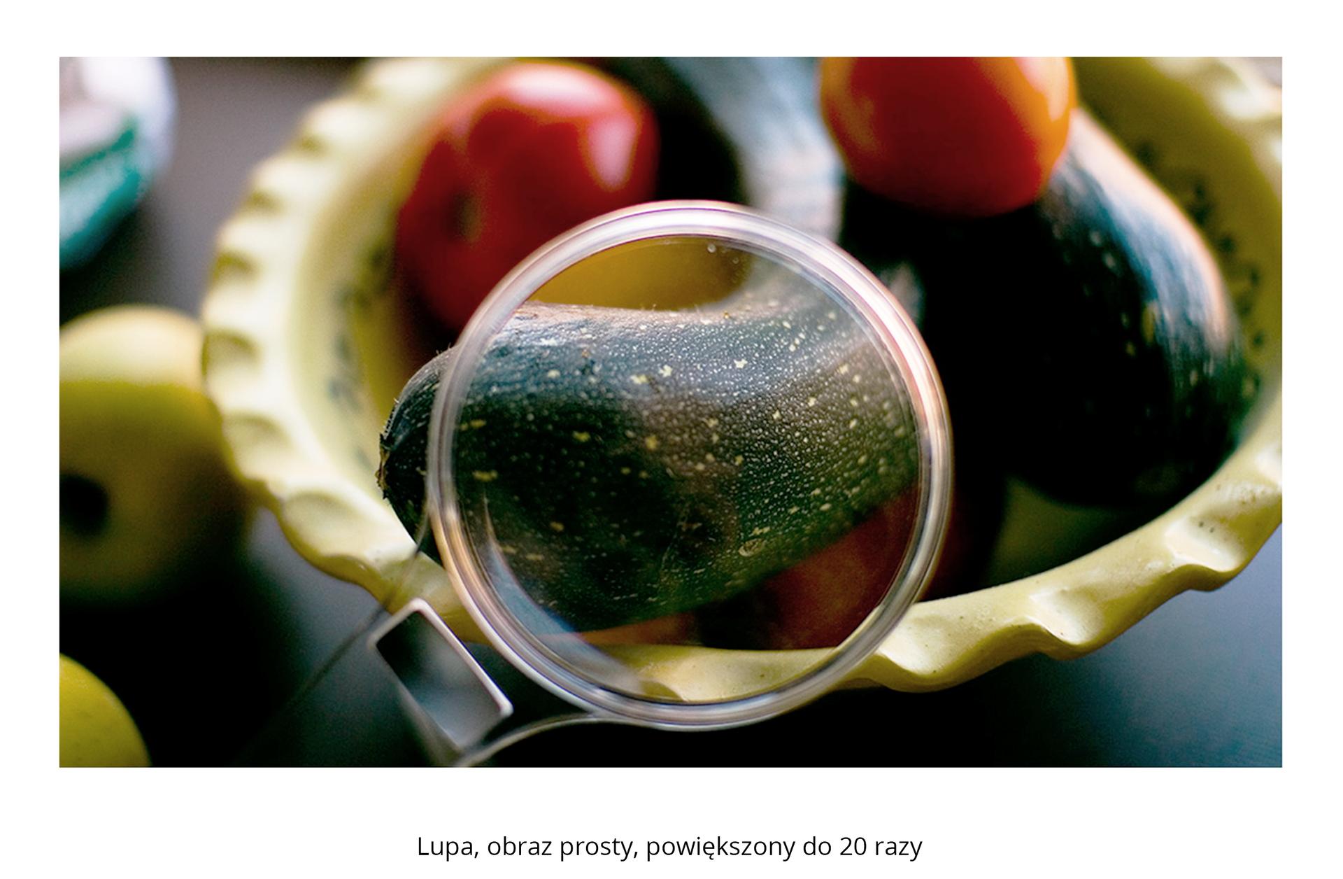 Galeria składa się ztrzech fotografii. Pierwsza fotografia przedstawia pomidory icukinię wmiseczce. Do cukinii przybliżono lupę imożna zaobserwować powiększoną 20 razy, wyraźną, zieloną wplamki skórkę.