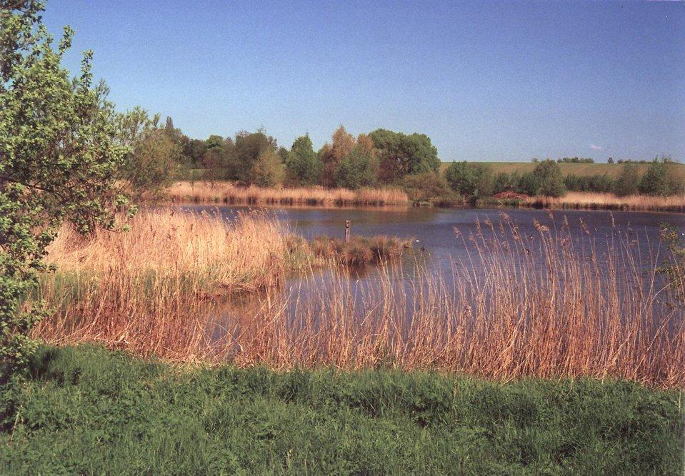 Jezioro wTuryngii Jezioro wTuryngii Źródło: Michael Fiegle, licencja: CC BY-SA 3.0.