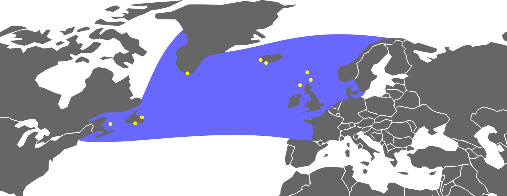 Ilustracja przedstawia wycinek mapy półkuli północnej. Sylwetki kontynentów ciemno szare, morze białe. Na niebiesko zaznaczono zasięg występowania alki olbrzymiej: od Europy przez Grenlandię do Ameryki Północnej.