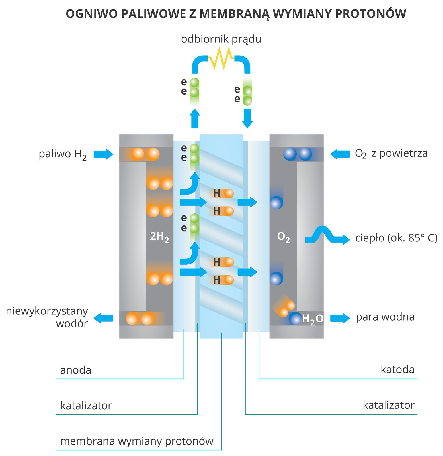 Schemat działania ogniwa paliwowego (wodorowo-tlenowego)