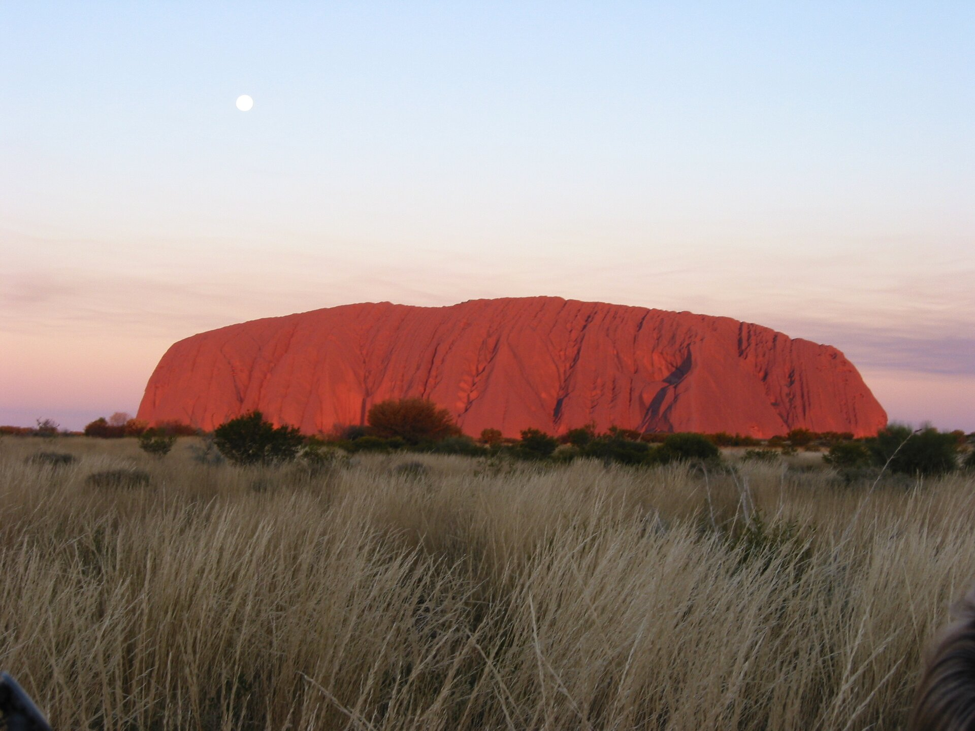 Na zdjęciu duża czerwona skała, opłaskim grzebiecie. Wdole roślinność trawiasta, pojedyncze drzewa.