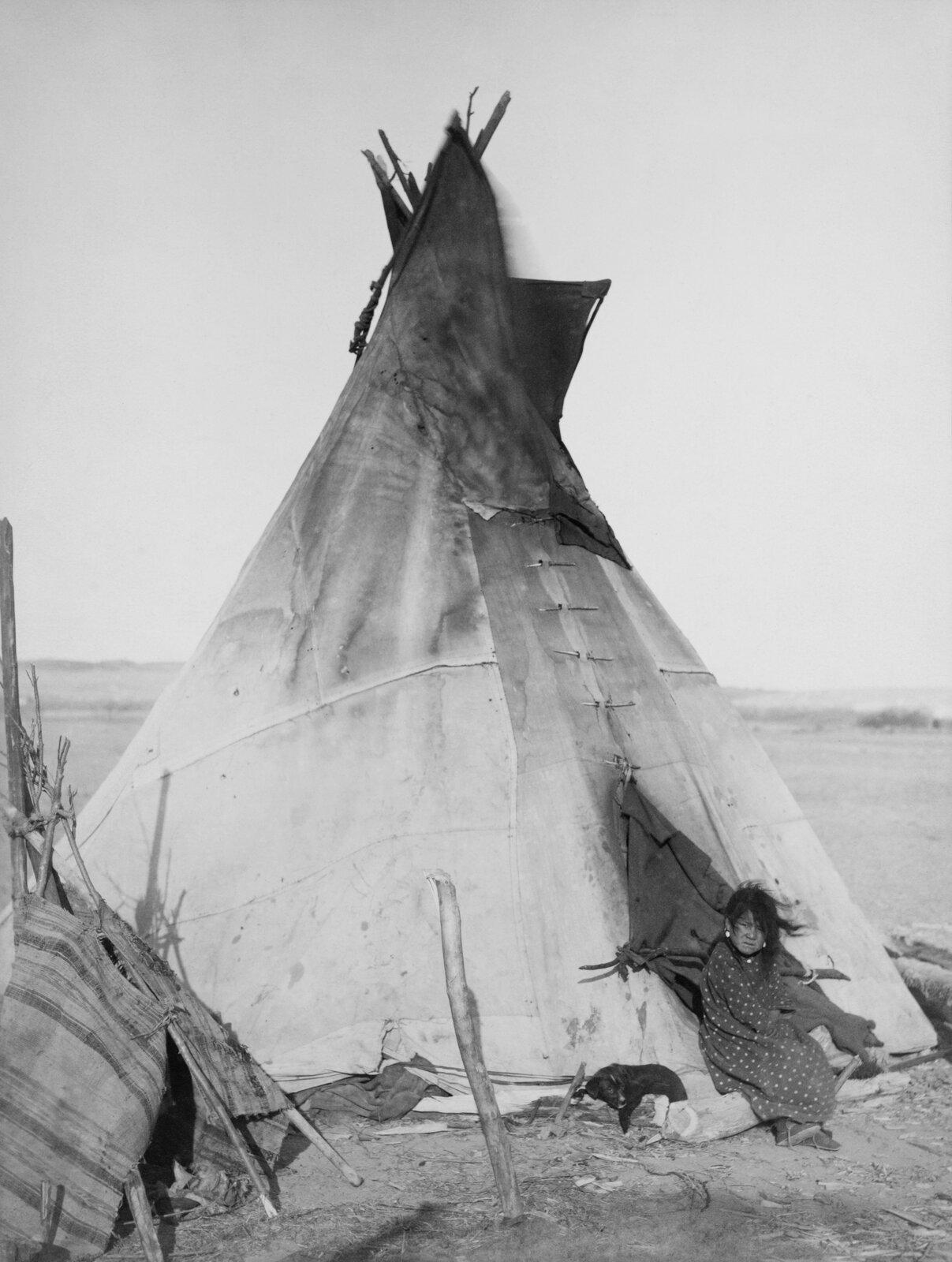 Fotografia prezentuje wysoki szpiczasty namiot – tipi. Namiot zbudowany na tyczkach pokrytych skórami zwierząt. Znamiotu poprzez otwór wychodzi Indianka.