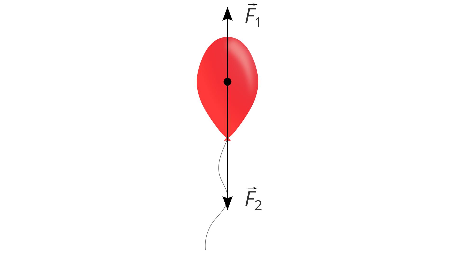 Na ilustracji znajduje się czerwony balonik. Tło białe. Balonik związany czarną nitką. Na środku balonika znajduje się punkt przyłożenia sił działających na balonik. Siły oznaczono wektorami. Wektory mają postać strzałek. Oba leżą na tej samej, pionowej prostej. Mają ten sam kierunek, ale przeciwne zwroty. Wektor zwrócony ku górze ilustracji jest opisany jako F1. Wektor zwrócony ku dołowi podpisano F2. Wektor F2 jest dłuższy.