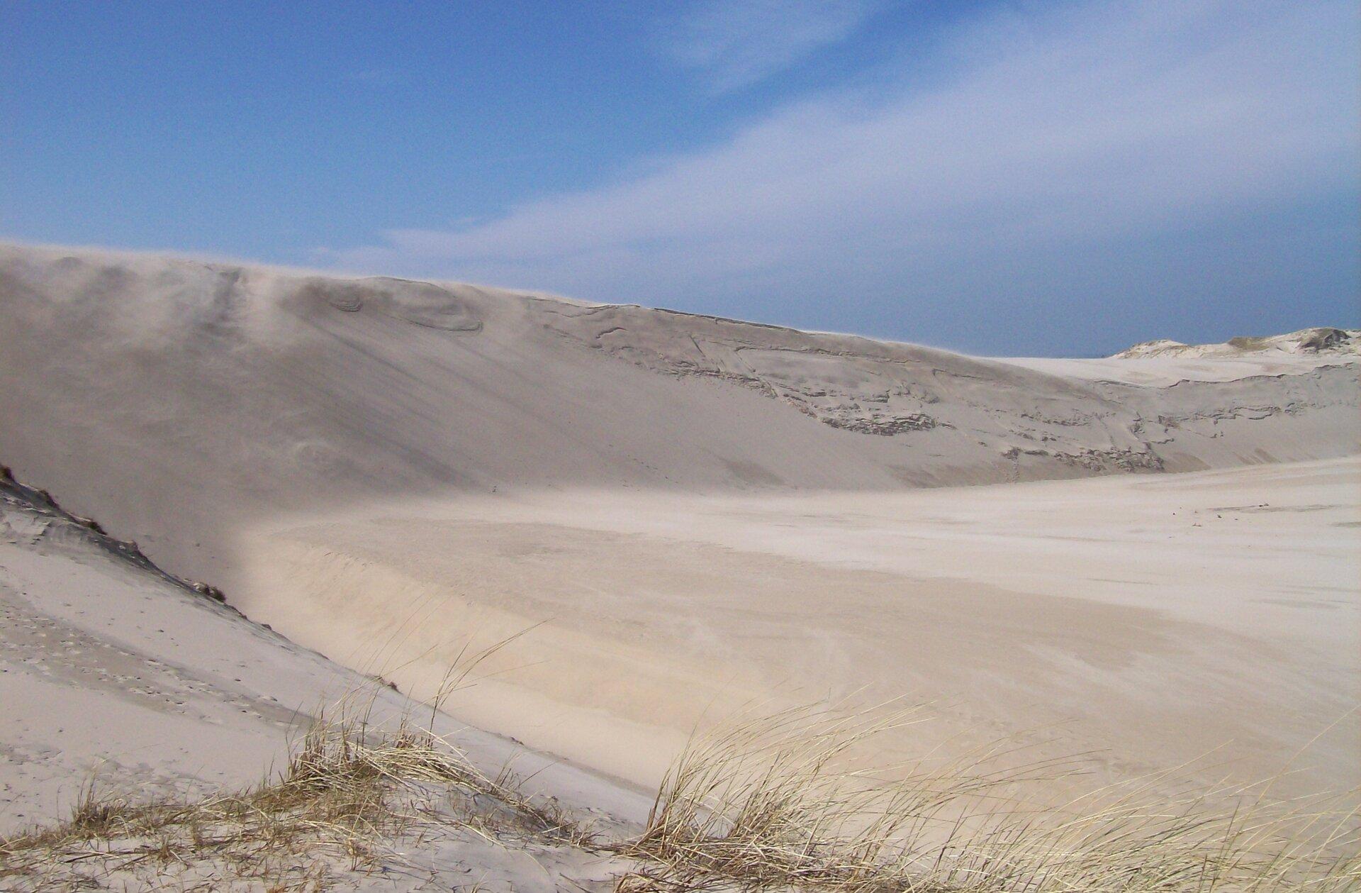 Nadmorskie wydmy wokolicach Łeby