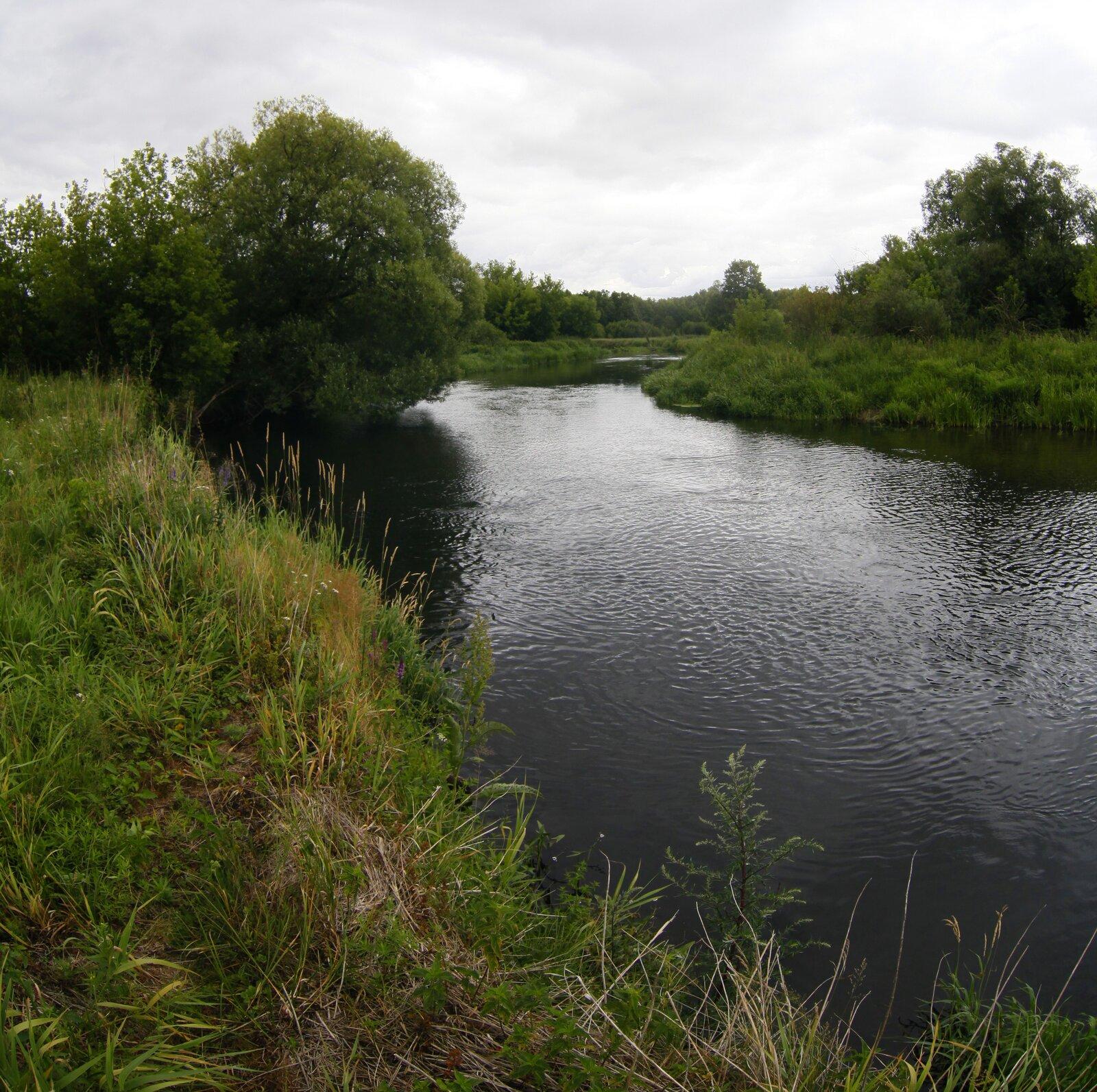 Wycieczka wirtualna rezerwat rzeka Drwęca
