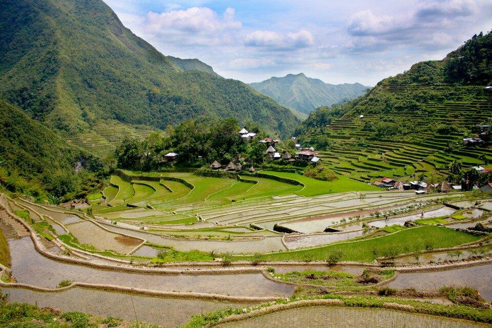 Na zdjęciu starasowane łagodne stoki górskie pod uprawę ryżu. Wtle wysokie góry.