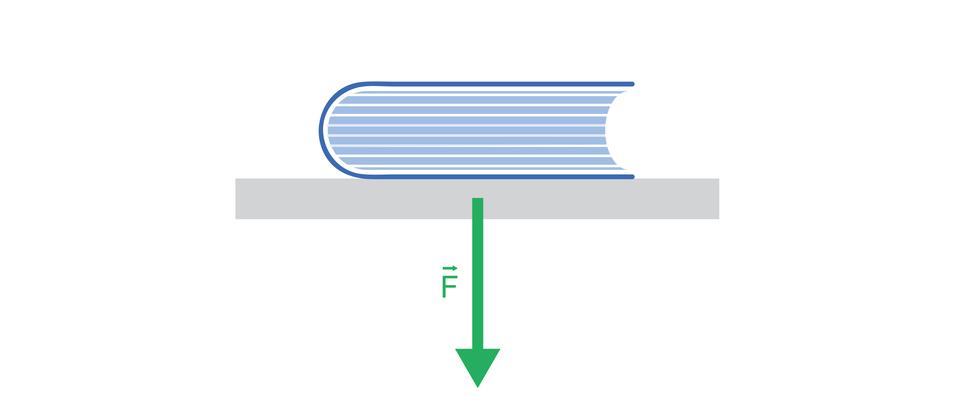 Ilustracja przedstawia książkę leżącą na stole. Poniżej książki, prostopadle do niej, zaznaczono wektor siły. Książka naciska na stół. Siła F⃗, ma kierunek pionowy, zwrot wdół, jest przyłożona do stołu ima wartość 10 N