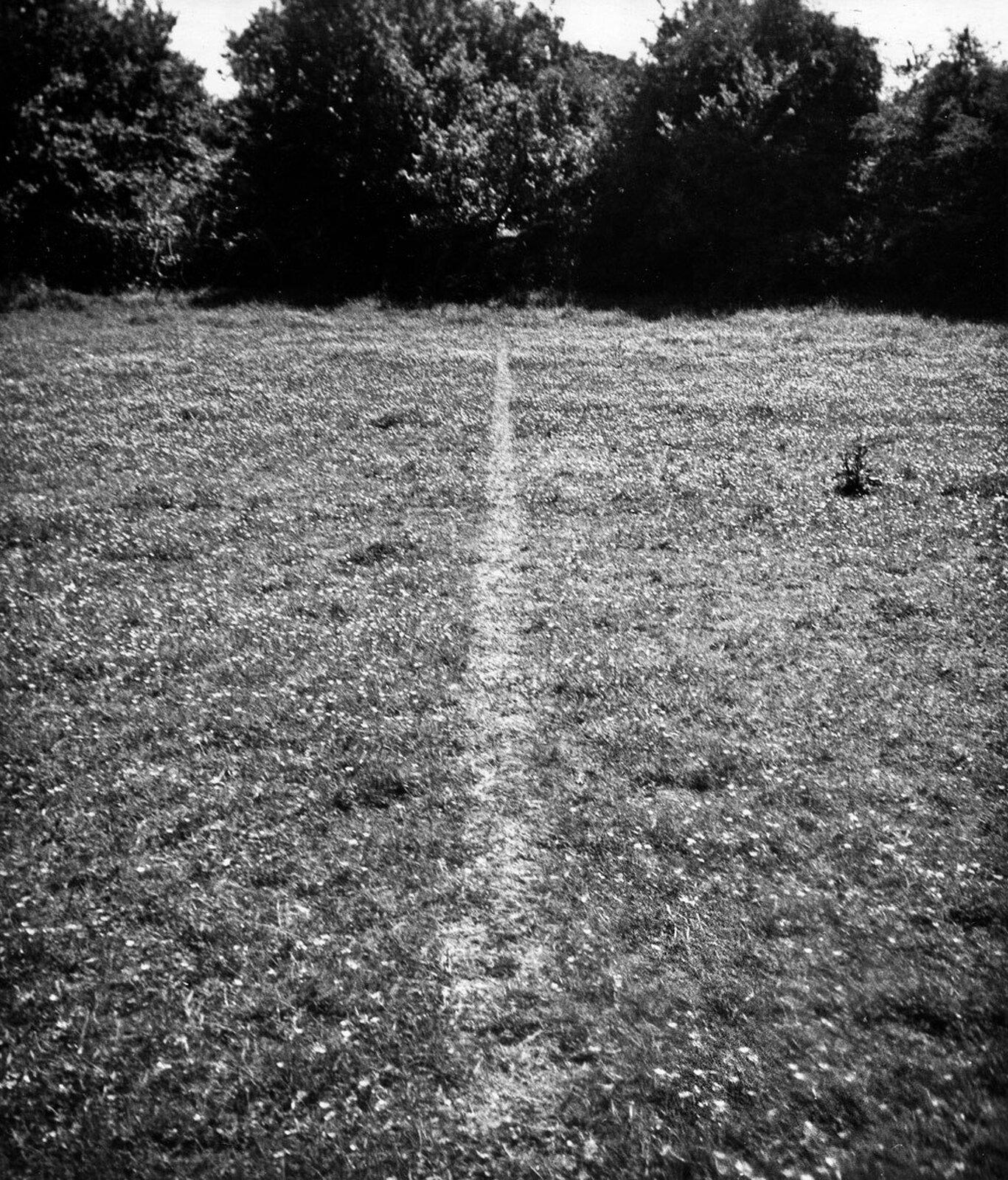 Ilustracja przedstawia wydeptaną linię na trawie. Została ona utworzona przez chodzenie. Ślad został stworzony wwyniku chodzenia artysty po prostej tam izpowrotem, do momentu wyraźnego zarysowania się linii na trawie.