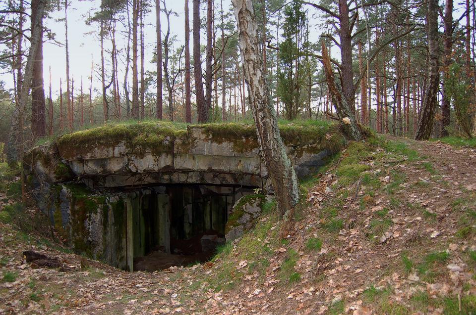 Zdjęcie przedstawiające stary bunkier zokresu drugiej wojny światowej, ukryty wlesie.