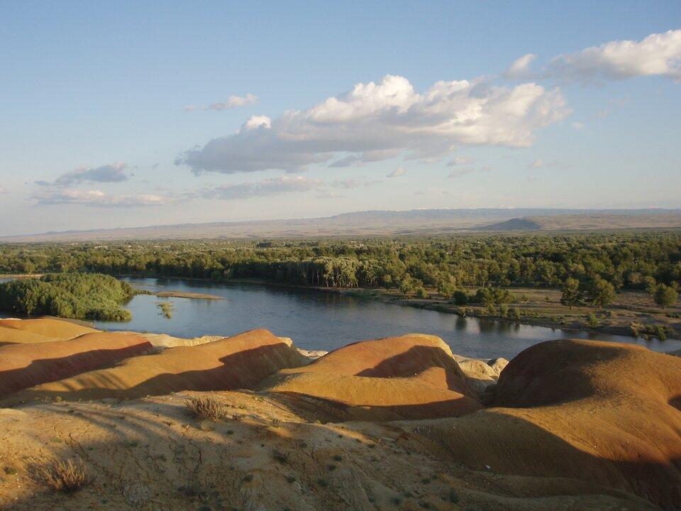 Na zdjęciu rzeka, na pierwszym planie piaszczysty brzeg. Na drugim brzegu las liściasty.