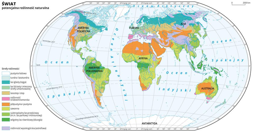 Ilustracja przedstawia mapę świata. Opisano kontynenty. Morza zaznaczono kolorem niebieskim. Opisano oceany. Czerwoną linią zaznaczono kontur Polski. Na mapie wobrębie lądów kolorami zaznaczono potencjalną roślinność naturalną. Zasadniczo strefy układają się pasami oprzebiegu równoleżnikowym, za wyjątkiem terenów górskich. Oznaczono pustynię lodową – kolor biały, tundrę ilasotundrę – kolor seledynowy, las iglasty – tajgę – kolor turkusowy, las liściasty imieszany strefy umiarkowanej – kolor zielonkawy, lasostep istep – kolor jasnopomarańczowy, roślinność śródziemnomorską – kolor różowy, półpustynie ipustynie – kolor ciemnopomarańczowy, sawannę – kolor jasnozielony, subtropikalny las przejściowy – kolor zielony, wilgotny las równikowy – kolor ciemnozielony, roślinność wysokogórską (astrefową) – kolor fioletowy. Mapa pokryta jest równoleżnikami ipołudnikami. Dookoła mapy wbiałej ramce opisano współrzędne geograficzne co dwadzieścia stopni. Po lewej stronie mapy wlegendzie umieszczono 11 kolorowych prostokątów wwymienionych wyżej kolorach wraz zopisami nazw stref.