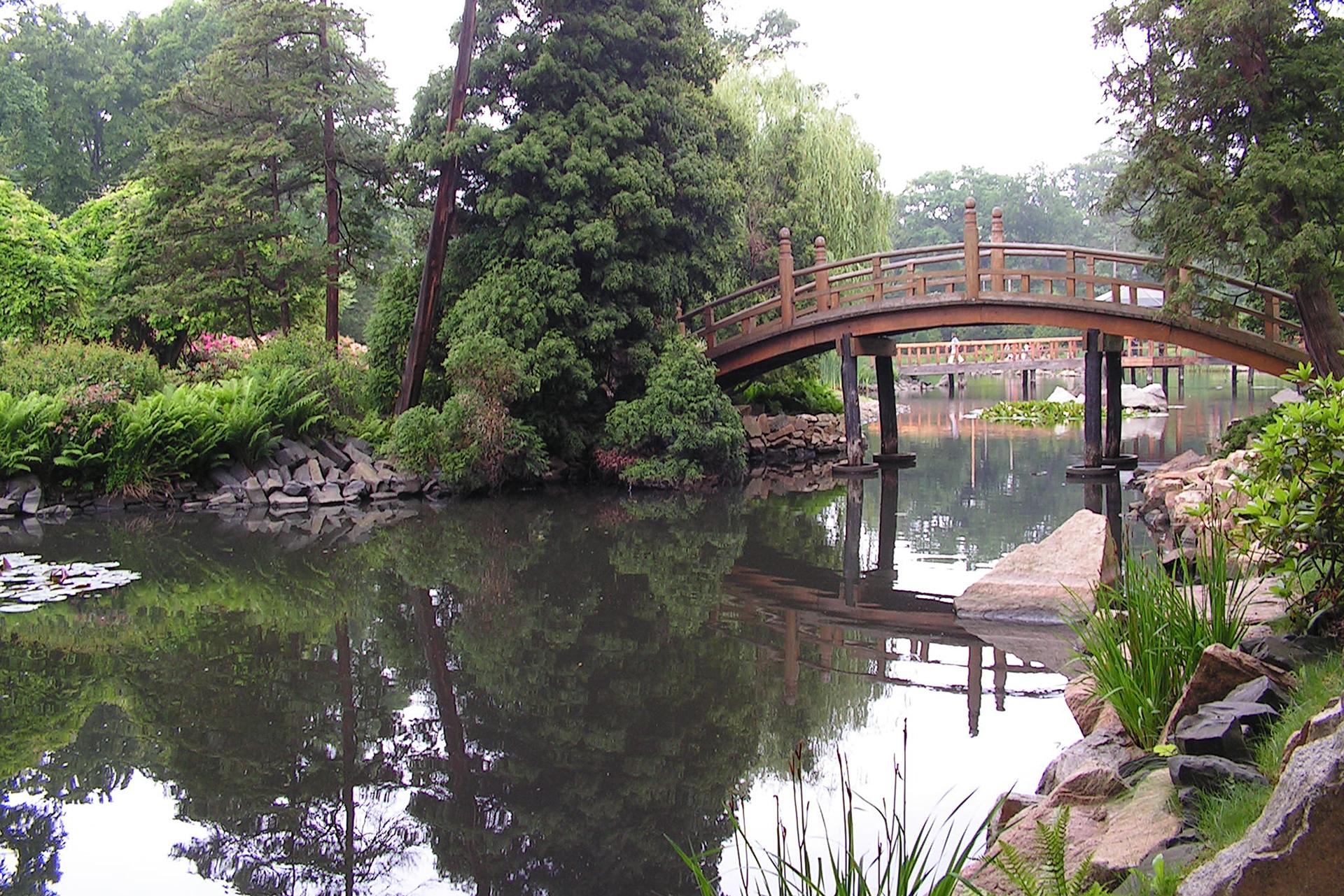 Fotografia prezentuje ogród japoński ze skałami, woda oraz mostem idrzewami.