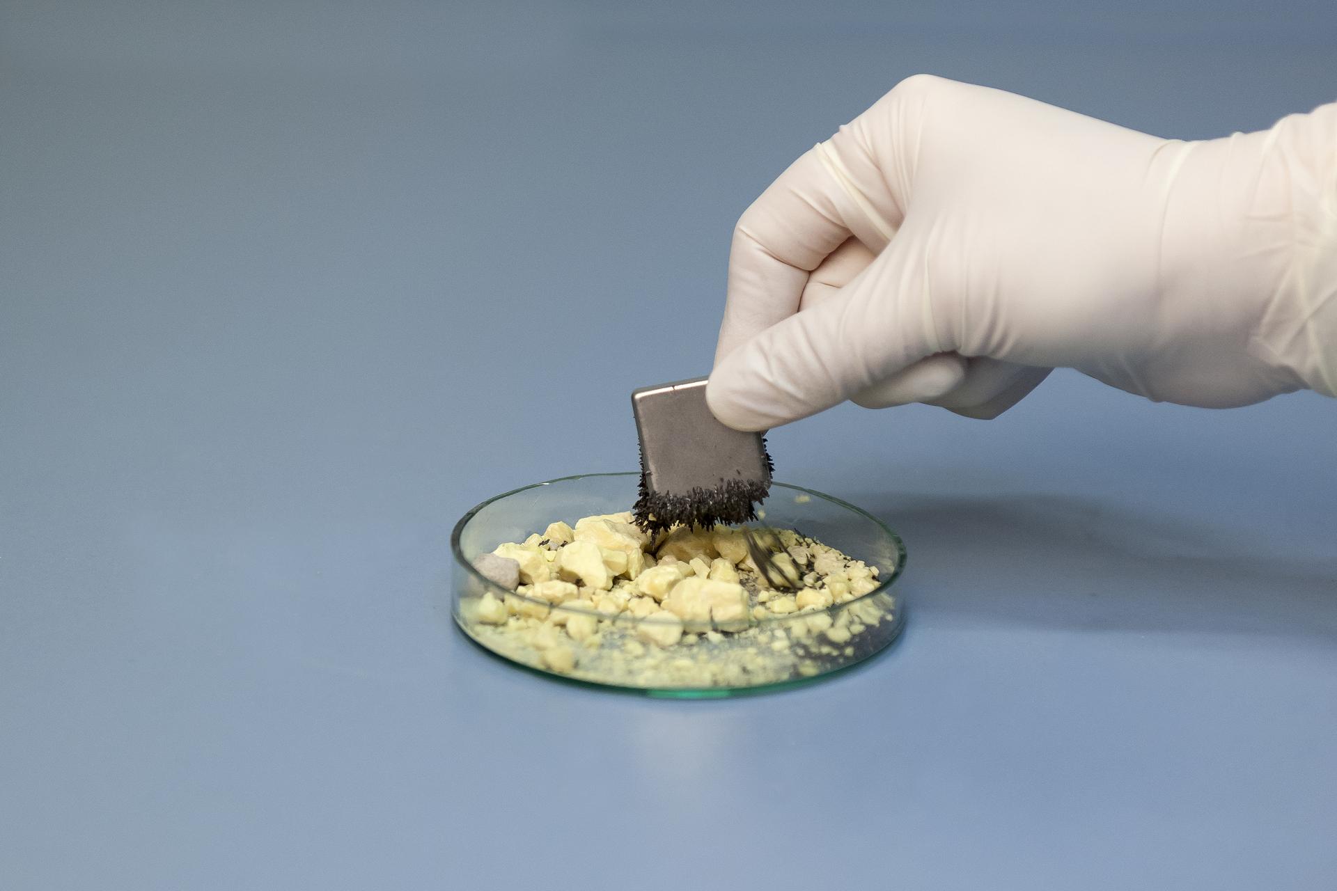 Zdjęcie przedstawia rozdzielanie mieszaniny siarki iżelaza za pomocą magnesu. Na płaskim szklanym naczyniu znajdują się żółte kawałki siarki pokryte czarnymi opiłkami żelaza. Do naczynia zbliża się dłoń wlateksowej rękawiczce trzymająca magnes. Do magnesu przylegają odciągnięte zmieszaniny drobiny żelaza.