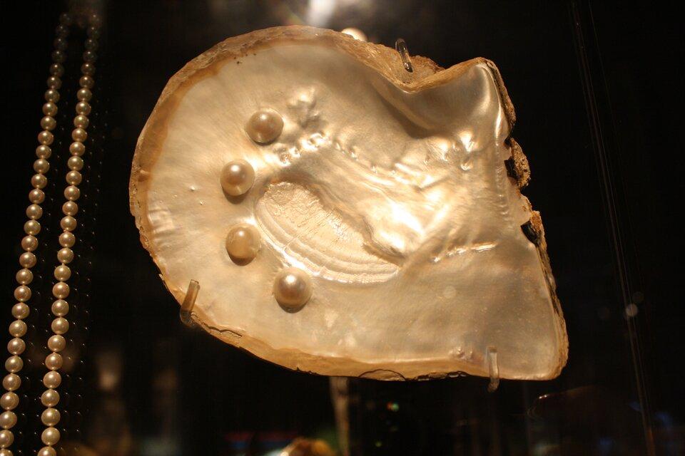 Fotografia przedstawia na czarnym tle beżową połówkę muszli małża od strony wewnętrznej. Jest błyszcząca ileżą na niej cztery kuliste perły. Obok znajduje się naszyjnik zpodobnych pereł.