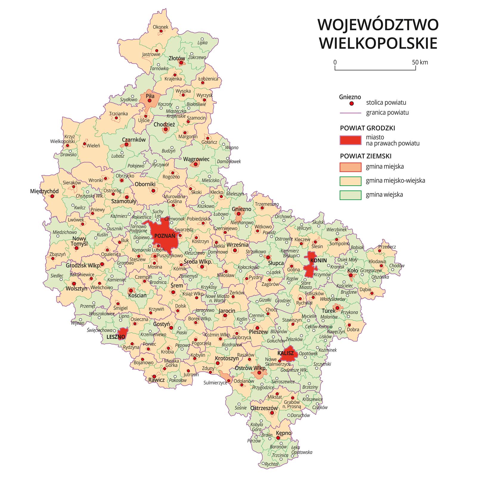 Mapa województwa wielkopolskiego. Na mapie fioletowymi liniami zaznaczono granice powiatów ziemskich, dużymi czerwonymi kropkami zaznaczono miasta będące stolicami powiatów. Wobrębie powiatów ziemskich kolorami wyróżniono gminy miejskie, miejsko-wiejskie iwiejskie. Czerwonym kolorem wyróżniono powiaty grodzkie zmiastami na prawach powiatu, miasta te opisano dużymi literami. Kolory iznaki użyte na mapie opisano wlegendzie. Wlegendzie podziałka liniowa.
