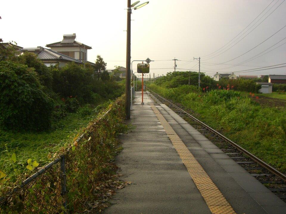 Na zdjęciu tory kolejowe iperon. Wtle zabudowania mieszkalne, dużo zieleni, kwitną kwiaty. Pada deszcz, kłuże.
