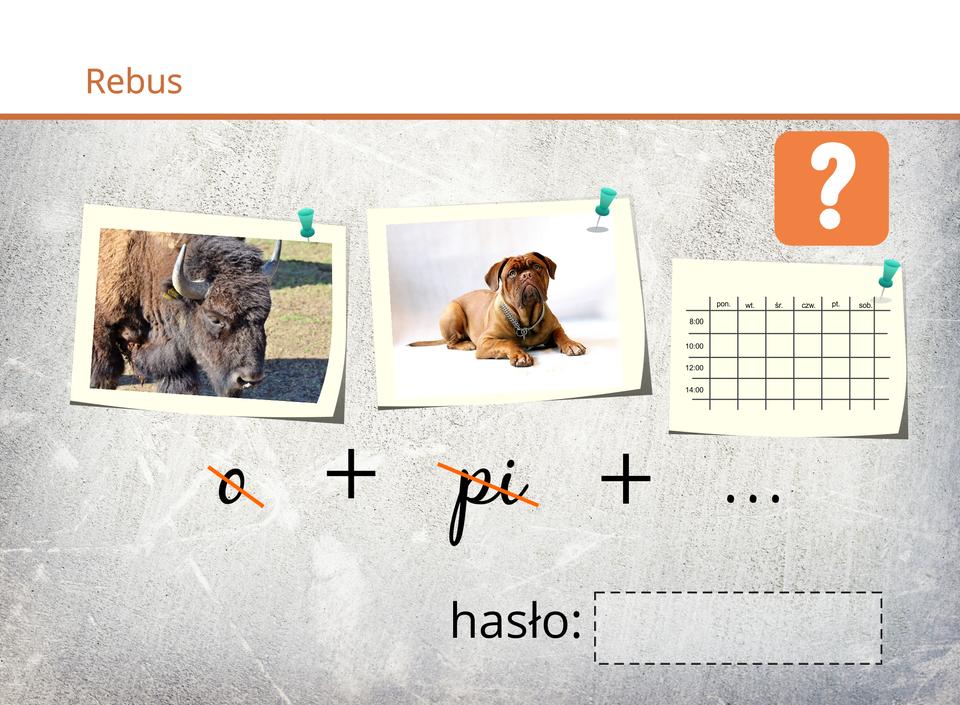 """""""• Grafika: zwierzę bizon podpis skreślone litery """"ON"""", • """"N"""" (grafika litery), • grafika pies skreślone litery """"PI"""", • grafika planu zajęć. """""""