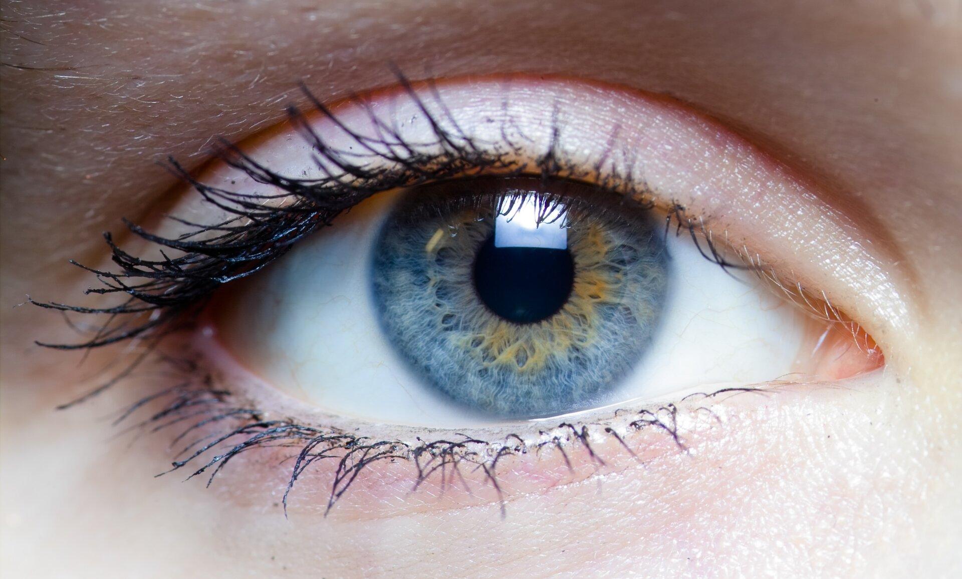 Zdjęcie ludzkiego oka