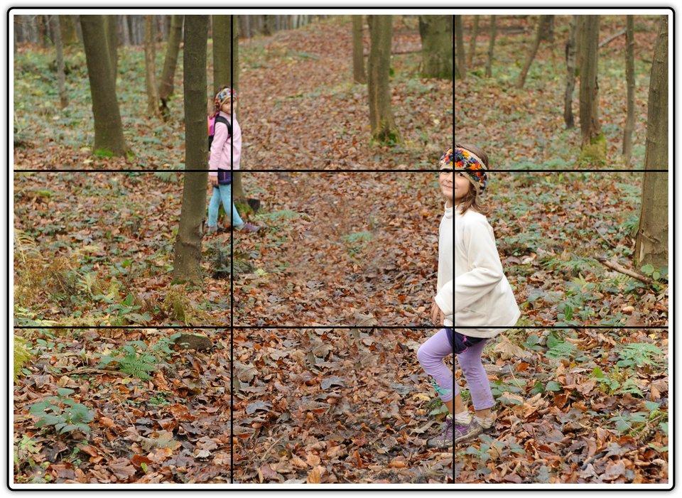 Fotografia przedstawiająca dzieci wlesie zpokazanym trójpodziałem kadru