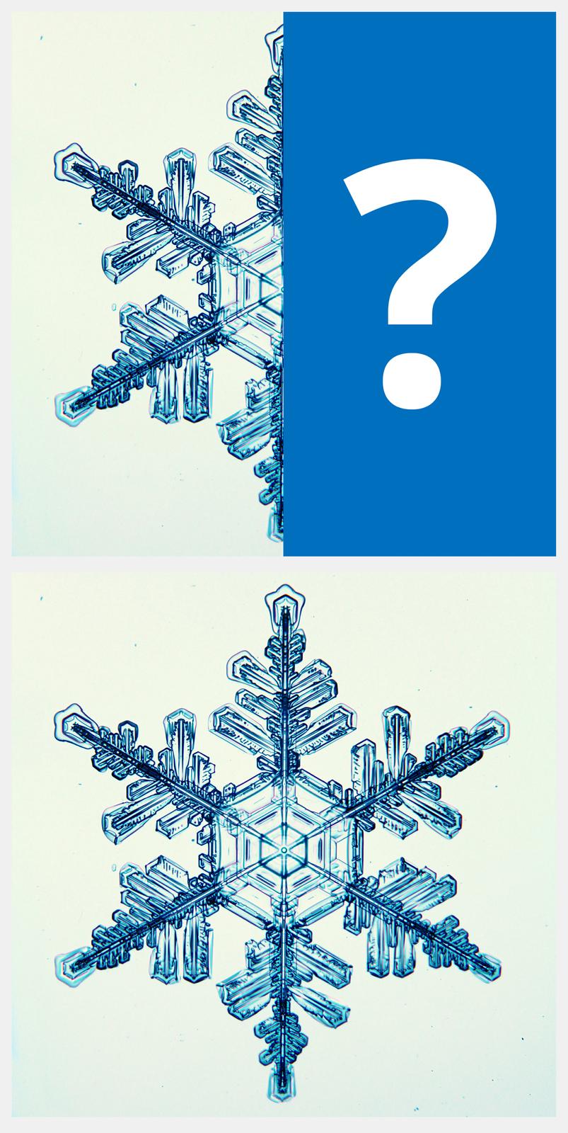 Ilustracja interaktywna jest podzielona na dwie części. Przedstawia połowę niebieskiego płatka śniegu, składającego się ze słupków lodu. Drugą część zajmuje niebieski prostokąt ze znakiem zapytania. Po odwróceniu ilustracji ukazany jest cały płatek osymetrycznym układzie, złożony zsześciu ramion.