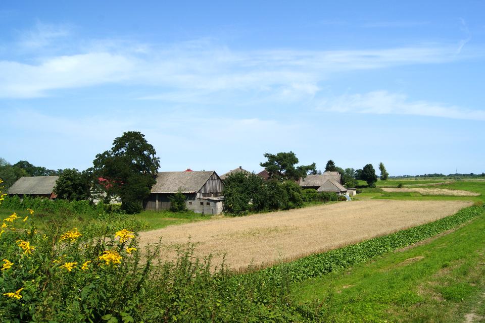 Fotografia pokazuje krajobraz wsi. Widoczne pola iłąki oraz zabudowania gospodarskie wtle.